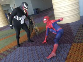 Spider Fight at Megacon '14 by deadpool24