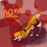 Nova's A Brilliant Star! - AT Hollow-Fawn by Little-Volii
