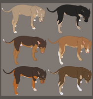 Tricolor pitbulls adoptable - CLOSED by ForeignFrontierRanch