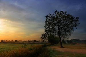 Morning Has Broken by rosefai