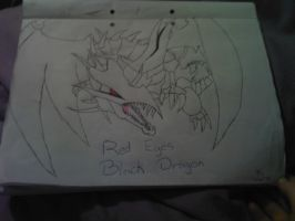 Red Eyes Black Dragon by Shakko1993