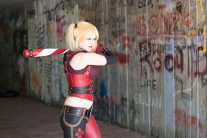 Up to the Plate : Arkham City : Harley Quinn  by Lossien