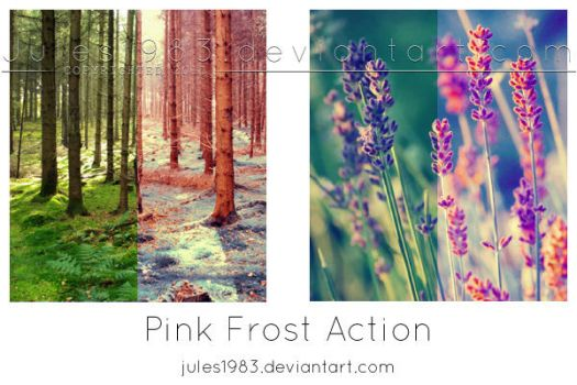 PS: Pink Frost Action by Jules1983