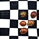 : beetle chess : by hellfirediva