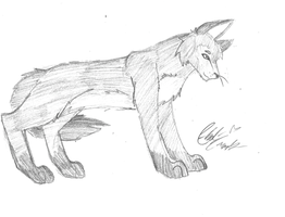 wolf, rough by LoD90