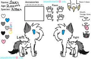 Jinks warrior cat form by Jetpackkitteh54