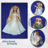 "17"" Doll Princess Serenity by TennyCap"