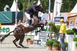 3DE Show Jumping Phase Stock 177 Too Close! by LuDa-Stock