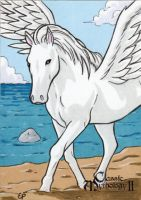 Pegasus Sketch Card - Classic Mythology II by ElainePerna