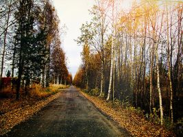 autumn 2012 by Luba-Lubov-13