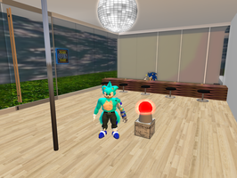 ice in second life by icethehedgehog11