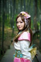 Samurai Warriors 3 Lady Oichi -15 by MissAnsa