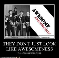 They Don't Just LOOK Like Awesomeness by TheOriginalBeatleBug