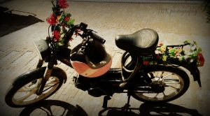 My moped. Driving, with flowers! by ASFmaggot