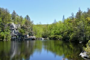 Hidden Pond Early Spring by ixbalam