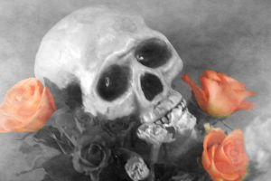 Skull and Roses by FenPixie