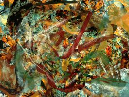 Abstract speed - I by MD-Arts