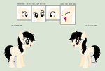 Fio's Reference Sheet by FioPonez