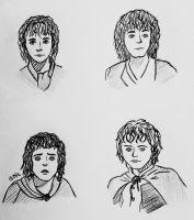 The four Hobbits by Wolfwoman24