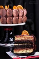 Orange chocolate cake slice by kupenska