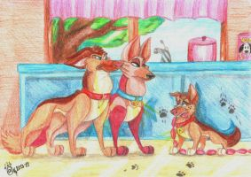 The first crime of Chester by LizLightningGSD