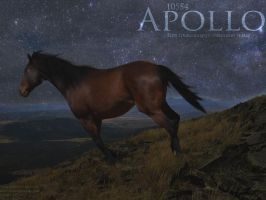 Apollo by Crystal852