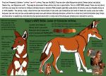 A Guide to Ethiopian Wolves by stuffed