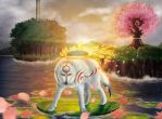 Okami - The Sun Rises by blopez