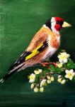 European goldfinch by Isil22