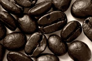 Coffee Beans by Michaela-Johnson