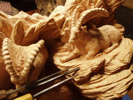 Alpine Ibex in progress 21 by woodcarve