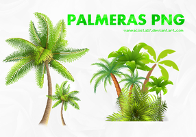 PACK PALMERAS PNG by vaneacosta17