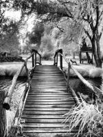 InfraRed Photo 4 by simre