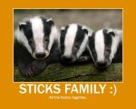 Sticks Family :) by YoniD3010