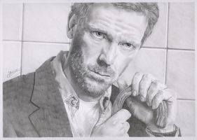 Hugh Laurie as Dr House by philrippingale