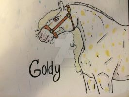 Goldy Training by LadyDutchess