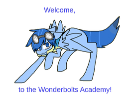 Welcome, to the Wonderbolt Academy! by 0Silverskull0