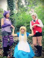 In our hands (Alice in Wonderland) by Doriri-chan