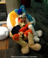 Fursuit snuggling by GuineaPigDan