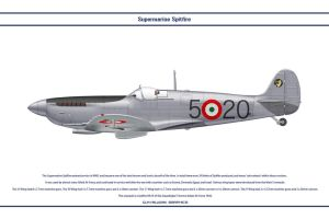 Spitfire Mk IX Italy 1 by WS-Clave