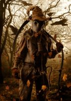 the scarecrow by sgorbissa