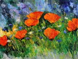 poppies 97 by pledent