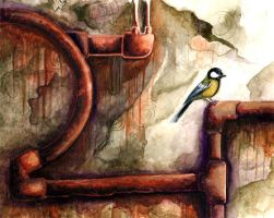 Great Tit and Pipes by Natalie-Busuttil