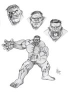 hulk study expressions and pose #1 by alch3mist-design