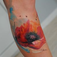 watercolor poppy by dopeindulgence