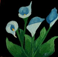 Blue Calla Lilies by brooke1110