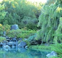 Japanese Garden Waterfall by Kitteh-Pawz
