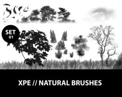 Natural Brushes // xpe NB 01 by xpe