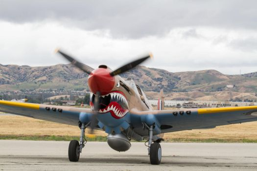 Curtiss P-40E Kittyhawk by IntermissionNexus