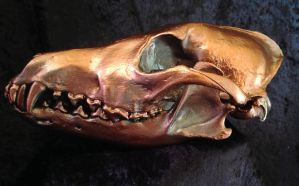 Antique Copper Coyote Skull by TheSilverCaribou